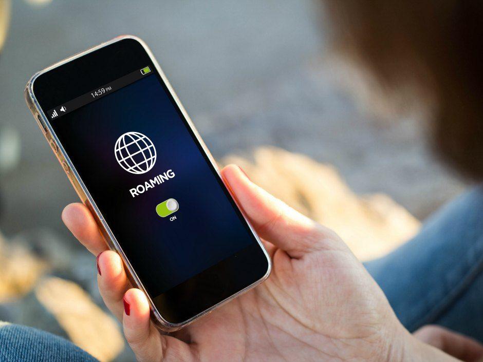 roaming-article.
